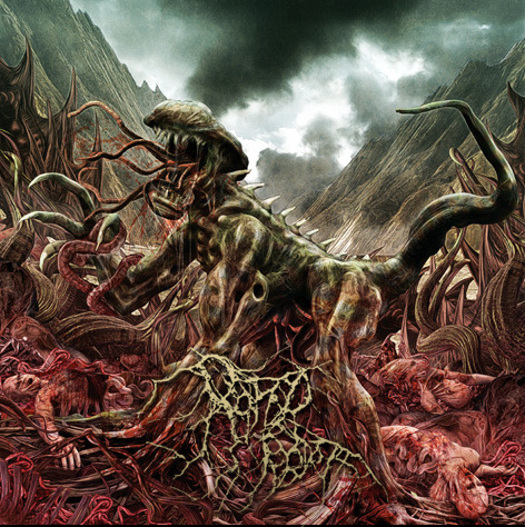 Rotted Rebirth – The Depth of Cessation (Reissue)