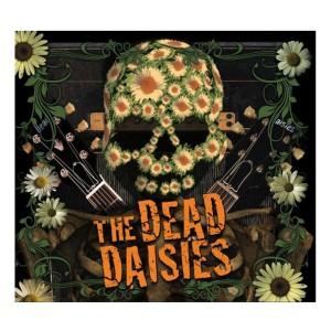 dd-album-cover