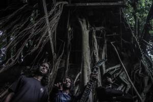 Amorphia Band 2