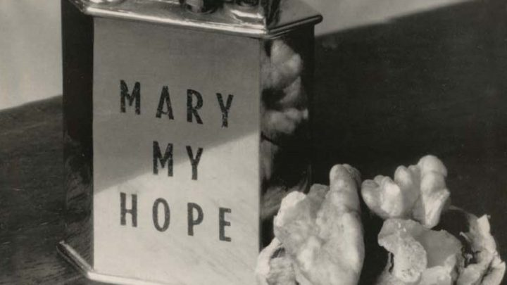 Mary My Hope – Museum: Expanded Edition