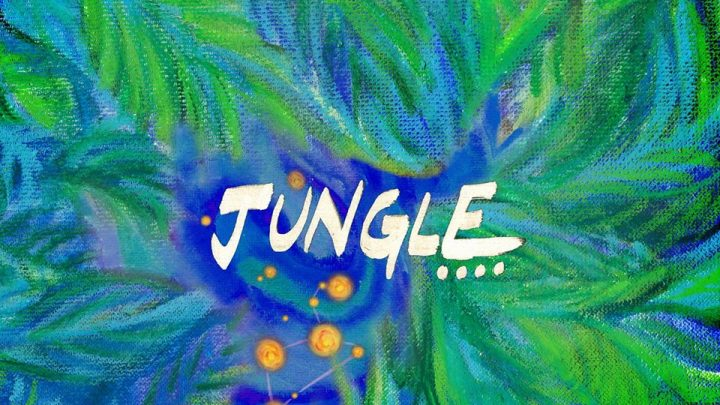 Dhruv Visvanath – Jungle (single)