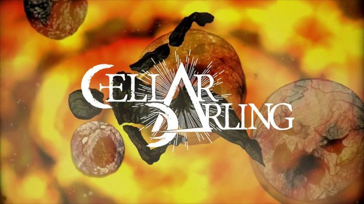 Cellar Darling – The Spell