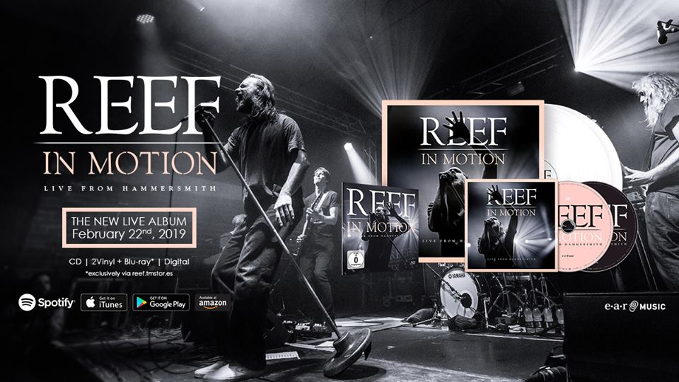 7pm Management Take on Worldwide Management of highly revered UK Top 40 rockers REEF.